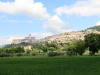 assisi8
