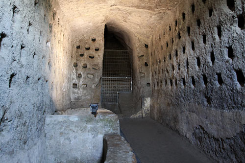 orcaves10